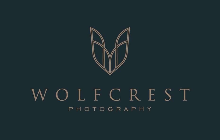Lựa chọn phong cách cho logo